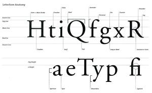 TypeExplanationSheet.jpg